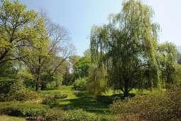 Miasto kupuje hektary, więc będzie zielono