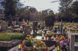 Porządkowanie grobów zostawmy na później