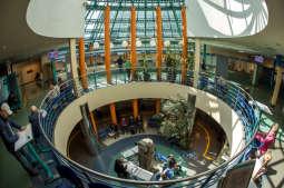 Urząd Miasta Krakowa zamknięty dla bezpośredniej obsługi klienta