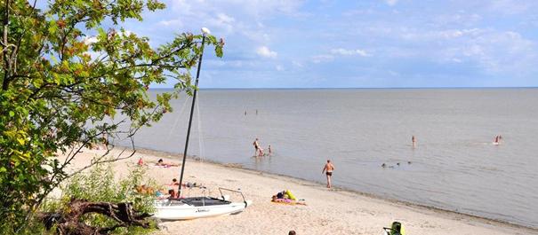 Plaże Estonii - widok na płytkie morze i plażę z jasnym piaskiem
